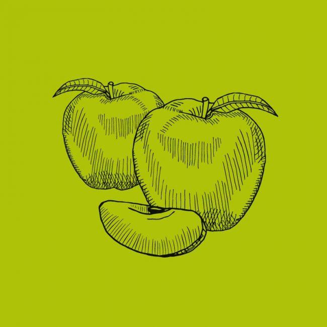 Most Bottled Apfelcider Illustration